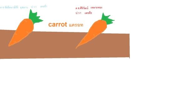 แครอท 1-1